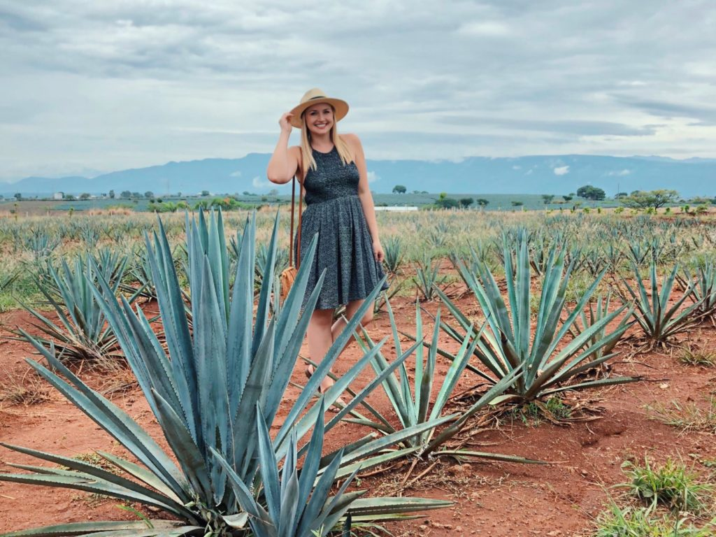Why Visit Tequila Mexico