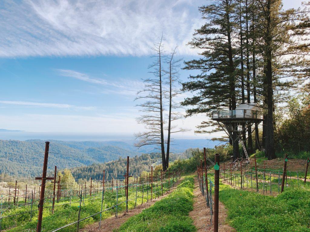 Glamping Vineyard Treehouse California
