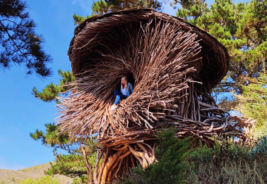 Treebones Big Sur