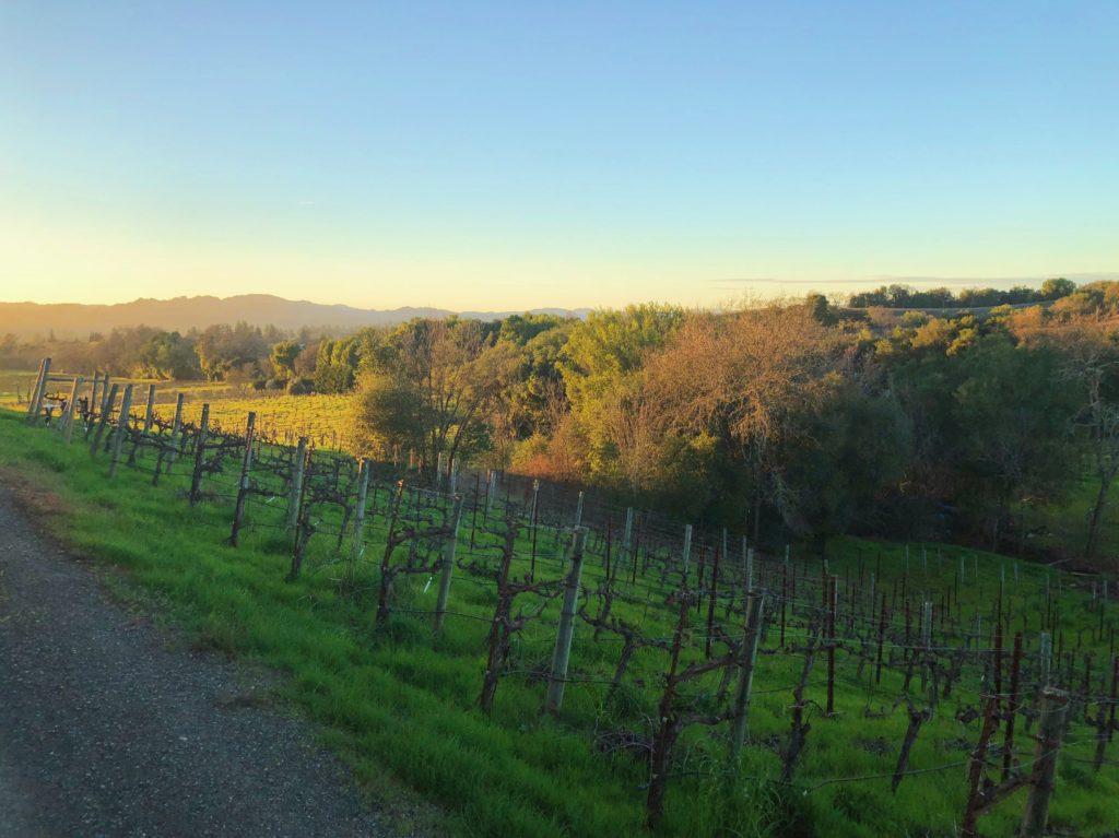 Christopher Creek Winery