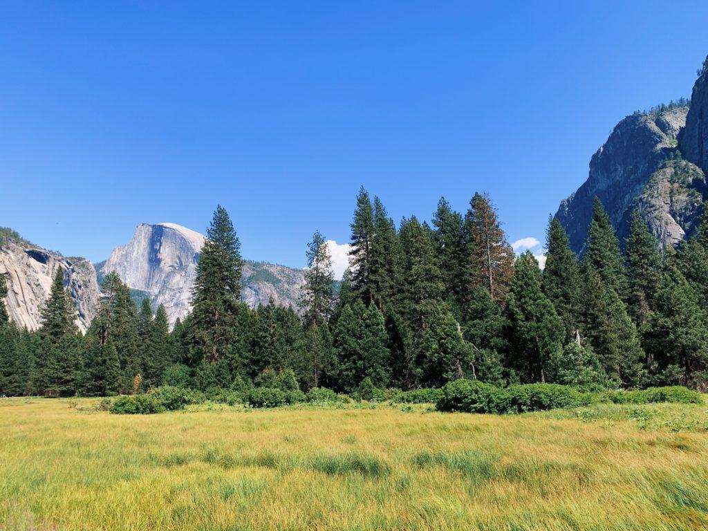 Cook's Meadow Loop Yosemite