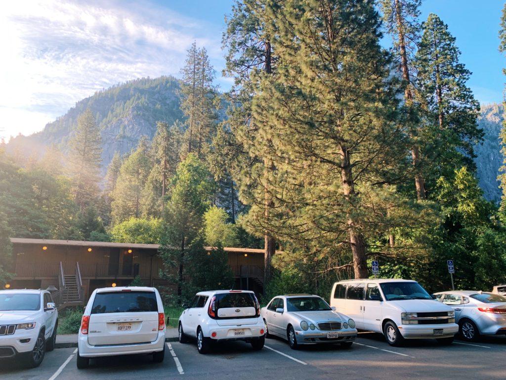 Driving in Yosemite National Park